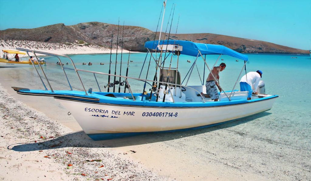Tailhunter Sportfishing Boats - Fast and Stable - they can reach shallow fishing holes cruisers cannot.