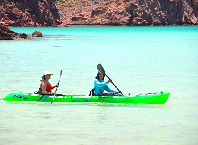 TAILHUNTER - Kayak Tours in the Sea of Cortez