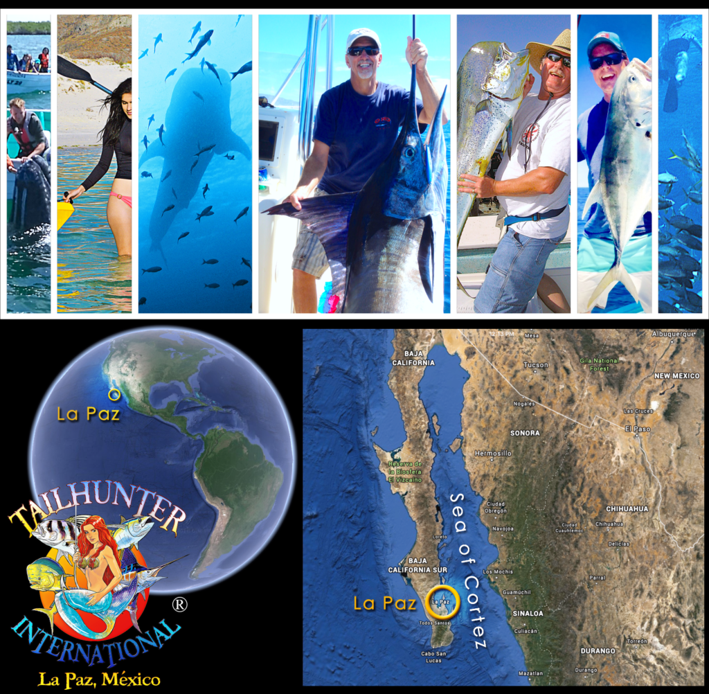 • Where is La Paz Baja Sur ? Best Sea of Cortez Fishing ... TAILHUNTER SPORTFISHING ...Sea of Cortez Fishing Charters ...Contact Us For More Info About Hotel-Charter Packages • FISH BAJA • Jonathan Roldan's Tailhunter International ...Best Rated Full Service Sport Fishing Outfitter - La Paz, Baja Sur