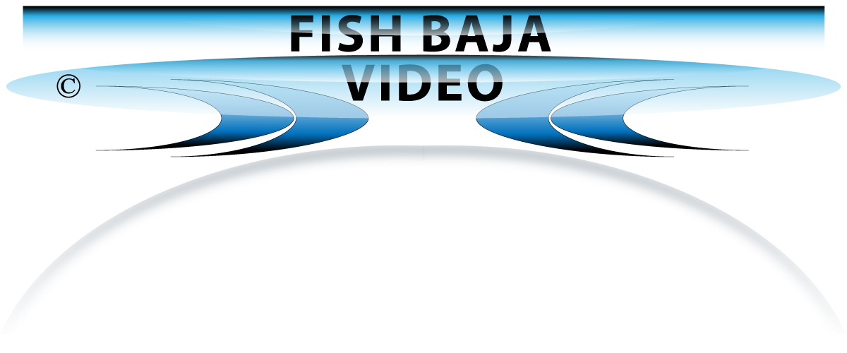FISH BAJA - Tailhunter Sportfishing Weekly Video Updates ... La Paz, Baja Sur Mexico
